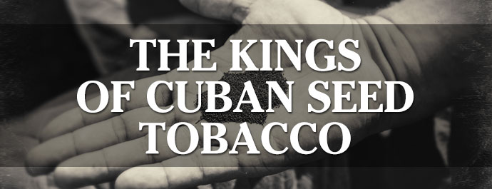 The Kings Of Cuban Seed Tobacco