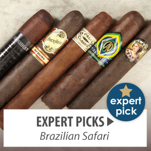 Expert Picks