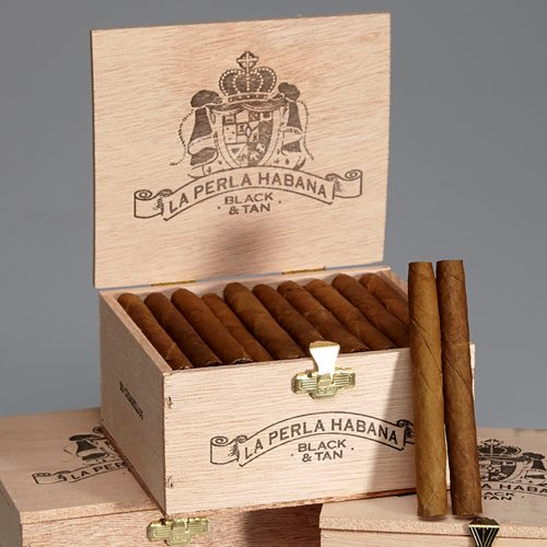 La Perla Habana Black & Tan Cigars