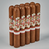 Ave Maria Lionheart Cigars