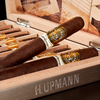 H. Upmann 175th Anniversary Cigars