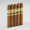 "Punch Rare Corojo 10th Anniversary Robsuto (Robusto) (5.5""x50) Pack of 5"