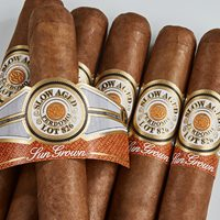 Perdomo Slow-Aged Lot 826 Sun Grown Cigars