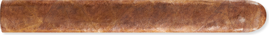 Rocky Patel Vintage 2nds 1992 Natural Robusto